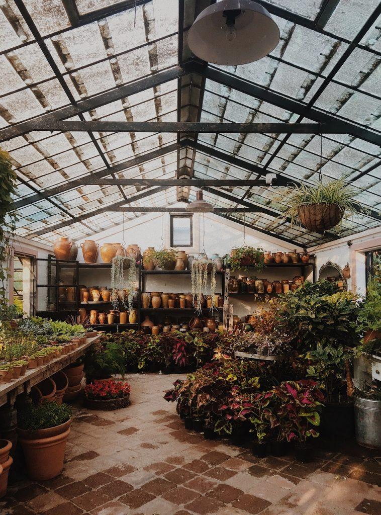 Szklarnia - sposób na udane uprawy